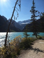 The path along Lake Louise