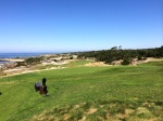 View from Spyglass Hill Golf Club