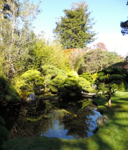 Japanese Botanical Garden, Golden Gate Park