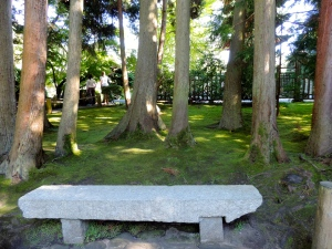 Stone bench in Japanese Botanical Garden, Golden Gate Park