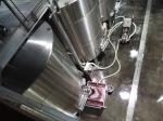 Grapes going through fermentation, Quintessa Winery, Napa Valley