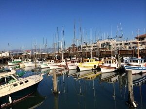 Marina of small boats in San Francisco Bay