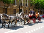 An ornately decorated horse drawn carriage takes us to the April Festival, Seville, Spain