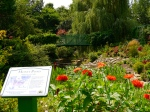 Monet's Pond - a replica of the scene Claude Monet painted several of his most famous paintings