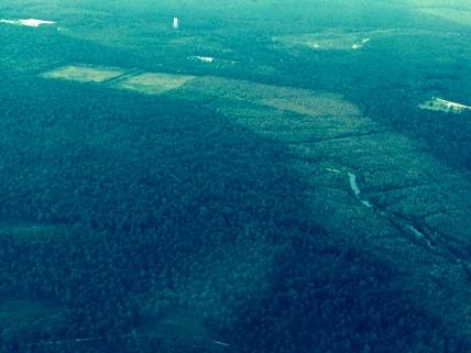 Thick lush green landscape surrounding Charleston.