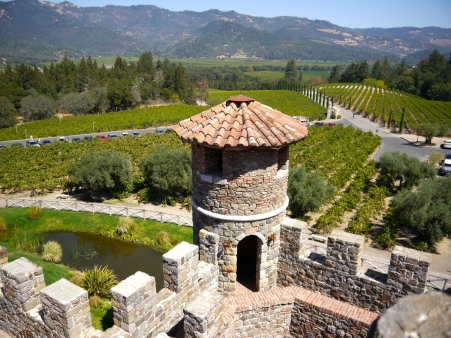 A beautiful view of the valley below the castle and it's own vineyards flowing out in every direction